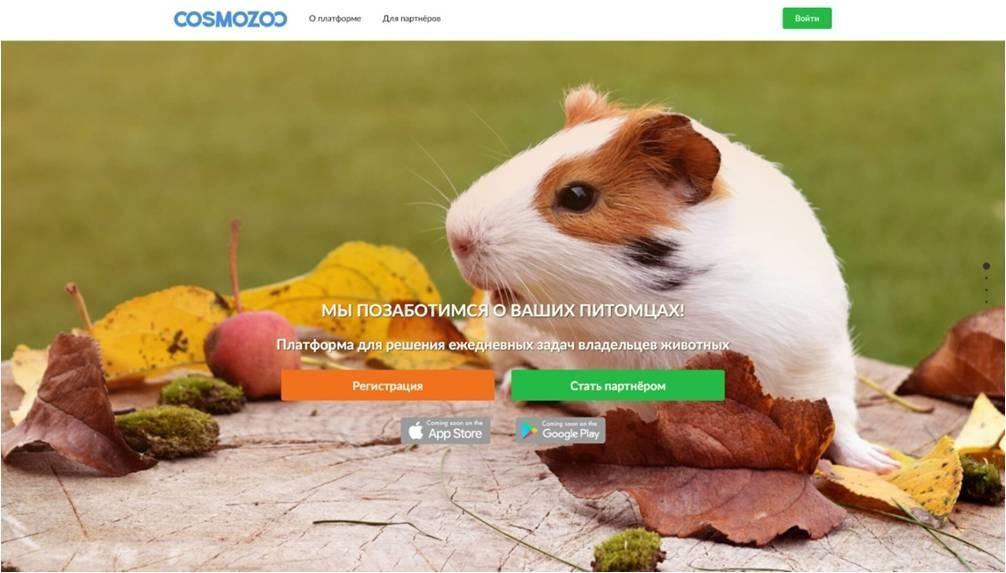 «CosmoZoo» - с заботой о ваших питомцах