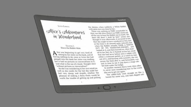 Гибкий PocketBook CAD Reader Flex