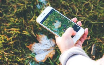 Типы экранов смартфонов