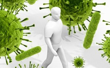 У микробов может быть собственная версия Интернета
