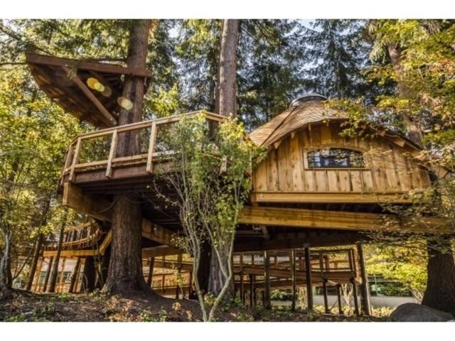 Microsoft строит деревянные апартаменты своим сотрудникам, чтобы они обрели гармонию