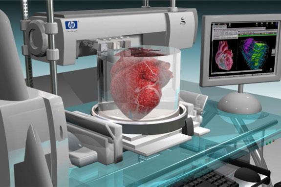 Новый биопринтер сможет производить человеческие ткани