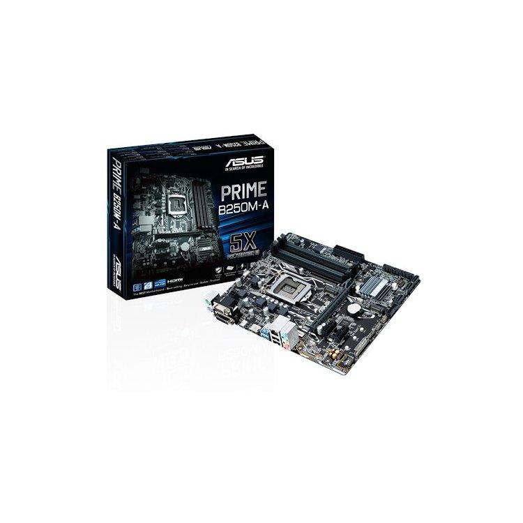 Купить Asus Prime B250 в интернет магазине бытовой техники и электроники