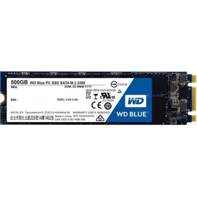 Western Digital 250GB WDS250G1B0B 500Гб