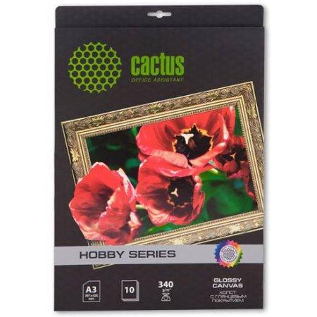 Cactus CS-СGA326010 глянцевая, холст