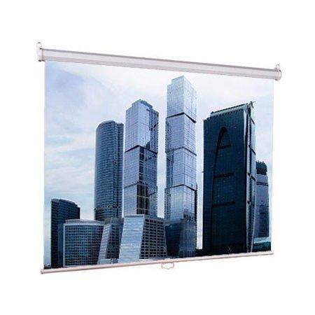 Экран Lumien 200x200см Eco Picture LEP-100103 1:1 настенно-потолочный рулонный
