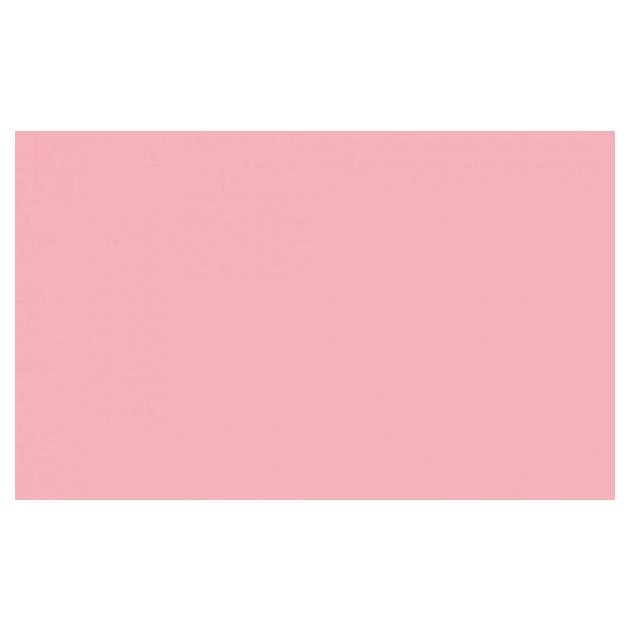 "Фон бумажный Savage 3-12 WIDETONE CORAL цвет ""Коралловый"" RGB 248-178-186, 2,72 х 11 метров S3-12"