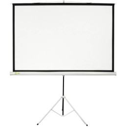 Экран Cactus 104.4x186см Triscreen CS-PST-104x186 1:1 напольный рулонный белый