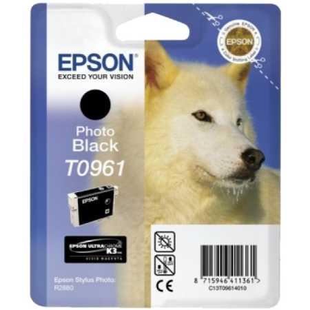 Epson T096
